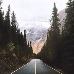 Dream Road Road Road Trip Road Photo Landscape photography scenic mountains Drive travel wanderlust on the road empty road Schomp BMW Adventure Awaits, Adventure Travel, Beautiful World, Beautiful Places, To Infinity And Beyond, Parcs, The Great Outdoors, Wonders Of The World, Places To See