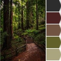 Love it!!! Enchanted Forest colors! <3