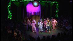 Shrek the musical. Set, lighting, and costume design by Cody Rutledge