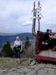 No i wstałam rano i poszłam na szlak – dość prosty do pokonania – 15 km tam i spowrotem trasą przez  las z Naprawy na Luboń Wielki do Schroniska PTTK położonego na najwyższym szczycie Beskidu Wyspowego – 1022 m.n.p.m. Po drodze pięknie było widać jeszcze ośnieżone szczyty Tatr. Ladder, Stairway, Ladders