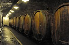 In the cellar of wineyard Heymann-Löwenstein ... hearing how the famous Riesling matures.