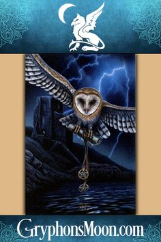 home diy ~ HEART OF THE STORM OWL ~ WALL CLOCK ~ LISA PARKER ~ MAGICAL ~ MYTHICAL 114