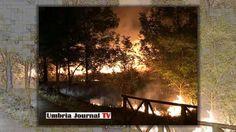 Fiamme nella notte, incendio al percorso verde di Bastia Umbra