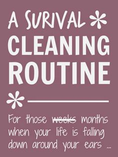 Mums make lists ...: Survival Cleaning Routine