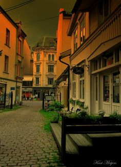 Oslo Vest  ~  © Kari Meijers
