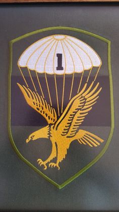 Parachute Regiment, Defence Force, Paratrooper, Military Service, Africans, Special Forces, Bats, South Africa, Landscape Photography