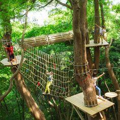 森での過ごし方|KUSUKUSU ~森の空中基地 くすくす~|星野リゾート リゾナーレ熱海