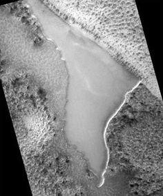 Wood on Mars NASA leaked Picture - Top Secret Aliens UFO Sightings | UFO News | UFO videos | Paranormal