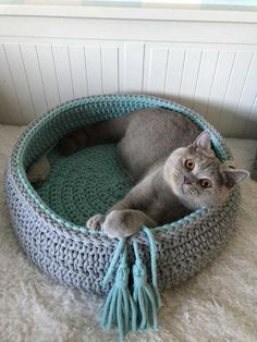 Super Bowl Sunday is almost upon us. Maybe you like many Americans are looking forward to a party with friends food drinks and football. However a Super Bowl party can be very different from a cats perspective. Dog Sweater Pattern, Crochet Dog Sweater, Super Bowl Party, Gato Crochet, Crochet Cat Beds, Crochet For Dogs, Cat Room, Dog Sweaters, Cat Furniture