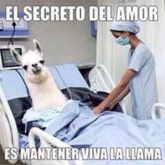 El secreto del amor...