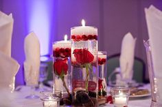 January Library Theme Wedding - Photo by Lilly Photography - red rose, river rocks, cranberries and floating candle centerpieces.