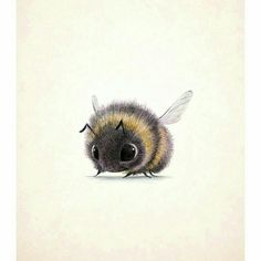 Animal Drawings Overwhelmingly Cute Animal Illustrations by Sydney Hanson - I've stumbled upon some Overwhelmingly Cute Animal Illustrations by Sydney Hanson. Their cuteness will surely melt your tiny little hearts. Art And Illustration, Cute Animal Illustration, Animal Illustrations, Illustrations Posters, Bumble Bee Illustration, Cute Drawings, Animal Drawings, Scary Drawings, Drawing Animals