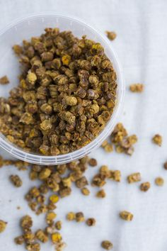 (photo credit: Chris Tonnesen) Bee Pollen, Bee Hives, Food Lab, Fermented Foods, New Flavour, Food Styling, Natural Health, Yummy Treats, Dog Food Recipes