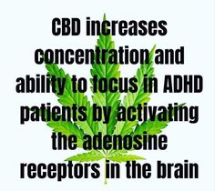 CBD increases concentration and the ability to focus in ADHD patients by activating the adenosine receptors in the brain. Anxiety Relief, Pain Relief, Endocannabinoid System, Cbd Hemp Oil, Oil Benefits, Medical Cannabis, Brain Health, Health Foods, Mental Health