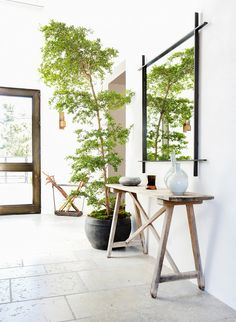 Rustic console table in entryway with large indoor plant, mirror, and vases