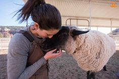 There's nothing in the world Shaun loves more than cuddles. Photo by Kurt Budde