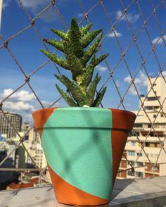 modelo Barros Geo (vaso com 10 cm) por 3990 reais  Pedidos oitominhocas@gmail.com #domingo #céuazul #suculenta #geométrico #barros #cerâmica #azul #planta #decoração