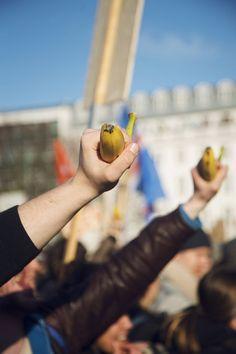 24000 Islandais dans la rue pour réclamer la démission du Premier ministre : à bas la république bananière