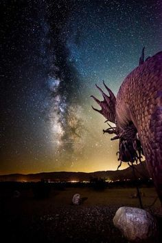 Life-Uncorked! Star-lit Sculptures in the Desert |