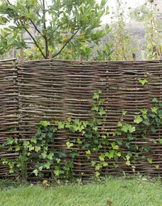 Wattle Fence Made of Willow Wattle Fence, Fence Gate, Garden Fencing, Back Gardens, Outdoor Gardens, Roof Gardens, Fence Design, Garden Design, Cerca Natural