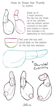 How to Draw Thumbs: Hand Tutorials