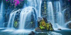 Waterfall And Rainbow wallpaper free 8k Wallpaper, Rainbow Wallpaper, Wallpaper Downloads, Teacher Portfolio, Waterfall Wallpaper, Waterfall Photo, Rock Flowers, Les Cascades, Tile Murals