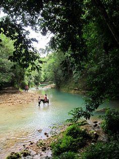 Horseback ride to the El Limon Waterfall, Samana Peninsula, Dominican Republic