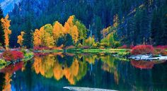 If you feel reluctant to make a change, remind yourself of the impermanence of nature. Take a walk in the park; enjoy the beauty autumn with its changing colors offers.