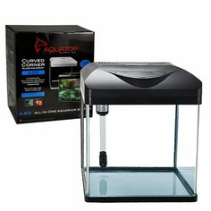Water lettuce floating aquarium plant (great for shrimp tanks)...