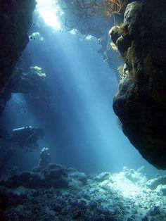 海の中にさす光は神秘的だ!