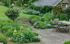"Arne Maynard: ""At the back of the house, lawn levels were lowered and an area excavated to give a dining terrace. Around the terrace undulating 'cloud' box hedging provides a green backdrop and a structure for the foxgloves, herbs and roses."""