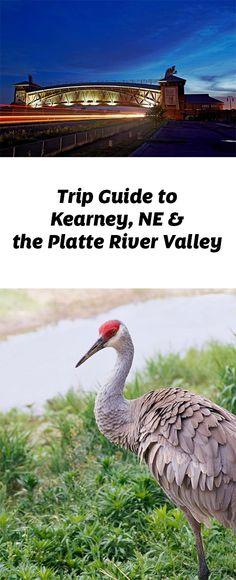 Destinations like Kearney, Grand Island and North Platte draw visitors with historical and recreational attractions. Trip guide: http://www.midwestliving.com/travel/nebraska/kearney/trip-guide-to-kearney-and-the-platte-river-valley/