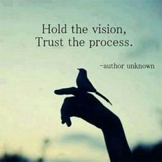 Good Morning Nature Apprentices! Today's challenge is to hold the vision and trust the process! The difference between a dreamer and a visionary is that first one keeps eyes closed while second one keeps eyes open! Don't give up! Only you can make the vision a reality! #naturepostings #nature #vision #dream #quotes #process #inspirational #life