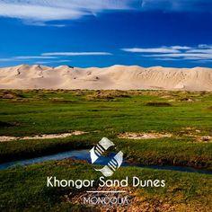 #khongor #sand #dunes #gobi #desert #mongolia #contrast #colorfull #centralasia #asia  #amazing #landscape #travel #traveling #voyage #tripconnexion #followme #picoftheday #photooftheday #igers #iger #instago #instalike #instadaily #instatravel #instacool #instatraveling