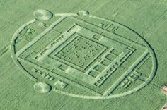 Crop Circle appears, December 31st 2013, in Salinas California and landlord has it mowed under because it was causing too much attention.  Braille experts say the center is the number 192 over and over again.