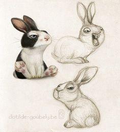 Marvelous Drawing Animals In The Zoo Ideas. Inconceivable Drawing Animals In The Zoo Ideas. Rabbit Illustration, Illustration Artists, Character Illustration, Animal Sketches, Animal Drawings, Animals Watercolor, Lapin Art, Illustration Mignonne, Art Mignon