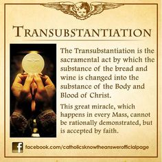 Catholic Teaching Catholics must also believe in the Transubstantiation which as you can see is the act that the bread and wine become the Body and Blood of Jesus. Catholic Theology, Catholic Catechism, Catholic Mass, Catholic Religion, Catholic Quotes, Catholic Prayers, Religious Quotes, Catholic Traditions, Catholic Dictionary