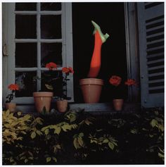 Charles Jourdan - Guy Bourdin