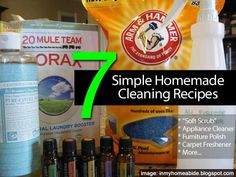"Many of you like to use natural solutions for pest control and keeping plants ""clean"". You want to stay as far away from chemicals as possible and I don't blame you… me too! Why not follow that same attitude indoors for cleaning. Over at inmyhomeabide.blogspot.com, Emily has several homemade cleaning recipes she uses and we …"