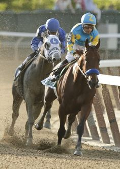 """""""And American Pharoah makes his run for glory!""""  One of racing's most legendary moments."""