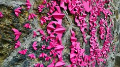 origami-street-art-mlle-maurice-1