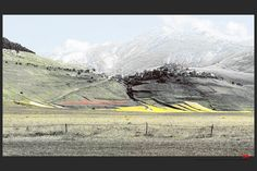 https://flic.kr/p/Jg9Yns | Castelluccio | © All rights reserved. Use without permission is illegal.