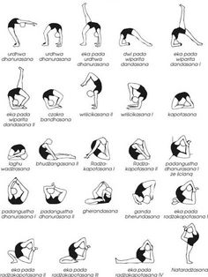 """tothemarathonandback: """"Yoga poses: Basic to Advanced (all these ś, ć and cz are from Polonized versions of names in Sanskrit, I hope it's not confusing) """" wowee so many poses Yoga Images, Yoga Photos, Yoga Flow, Yoga Meditation, Pilates, Yoga Poses Names, Basic Yoga Poses, Different Types Of Yoga, Yoga Posen"""