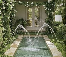 reflecting pool with water sprays - a beautiful, fluid view from inside the home as well as outside