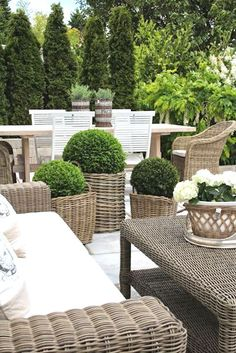 10 great examples of how to incorporate potted boxwoods in your landscaping | I just love these potted boxwoods in these gorgeous wicker containers | visit the post for more ideas