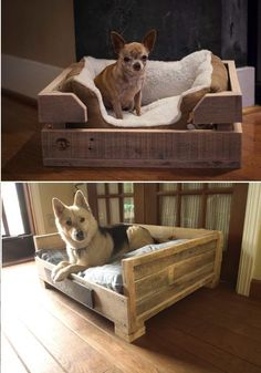DIY Dog Bed Using Wooden Pallets @thespeedychef - I wanna make this for axel!