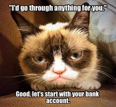 Even more anti-pick up lines with Grumpy Cat.