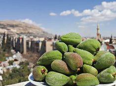 صباح الخير من دمشق