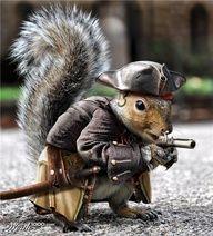 Captin Jack Squirrel