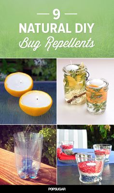 Stay Bug-Free This Summer With These 9 Natural Solutions